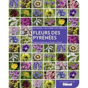 fleurs_des_pyrenees_15