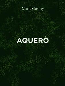 Aquero_17