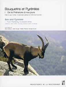 Bouquetins et Pyrénées T