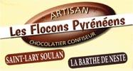 Logo_LesFloconsPyreneens_2017