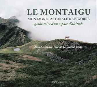 Montaigu T