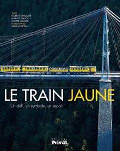 train jaune_17